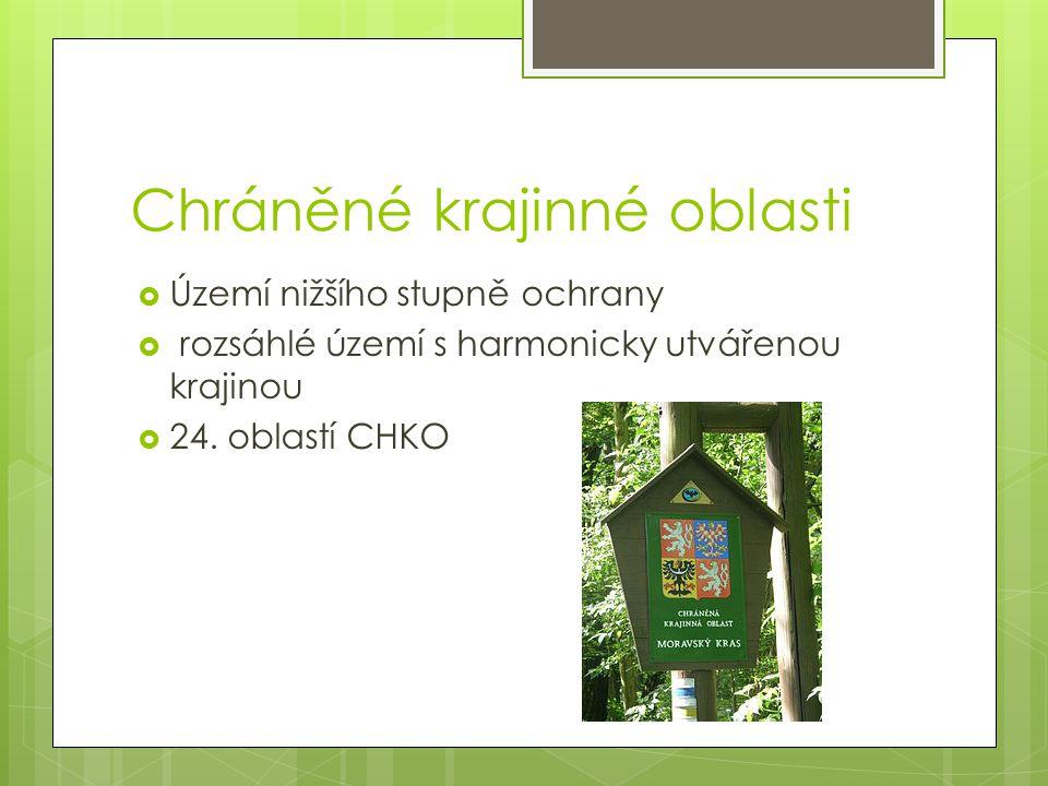 CHKO Litovelské pomoraví  Založen 1990  Rozloha 96 km 2  Ochrana lužních lesů  Nejčastěji zalesněno doubravou