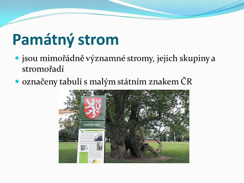 Památný strom jsou mimořádně významné stromy, jejich skupiny a stromořadí označeny tabulí s malým státním znakem ČR