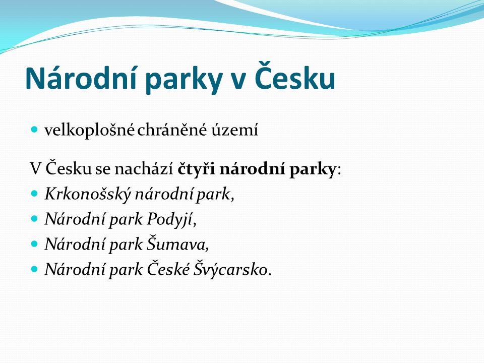 Národní parky v Česku velkoplošné chráněné území V Česku se nachází čtyři národní parky: Krkonošský národní park, Národní park Podyjí, Národní park Šu