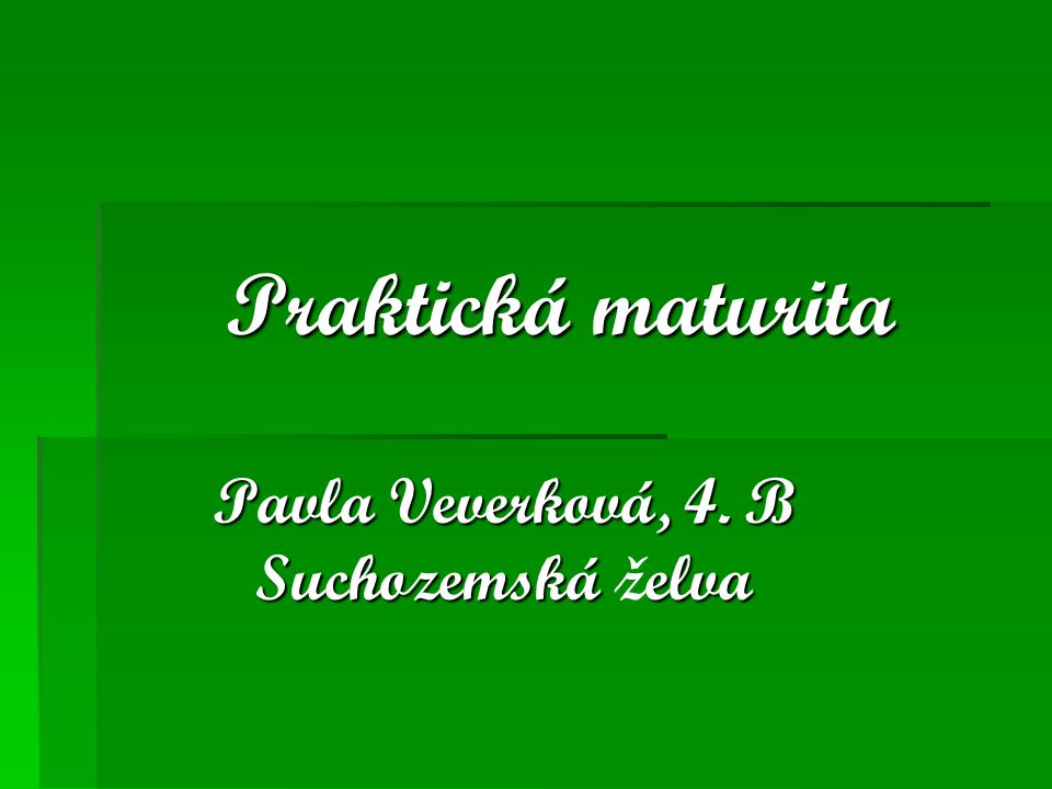 Praktická maturita Pavla Veverková, 4. B Suchozemská elva Pavla Veverková, 4. B Suchozemská želva