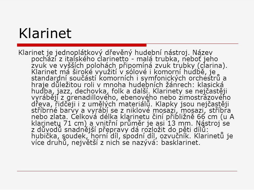 Klarinet je jednoplátkový dřevěný hudební nástroj. Název pochází z italského clarinetto - malá trubka, neboť jeho zvuk ve vyšších polohách připomíná z