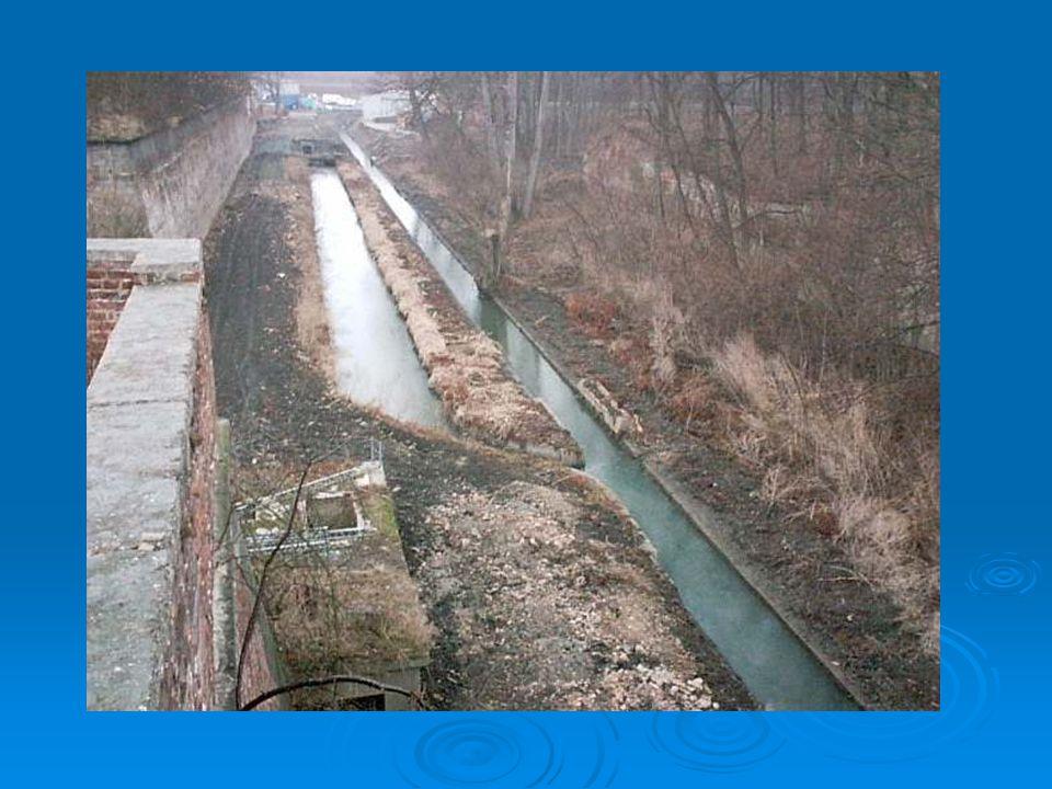 Škodliví činitelé  Průmysl: Do řek jsou každoročně vlévány miliony tun stříbra, mědi, olova, zinku i arsenu.