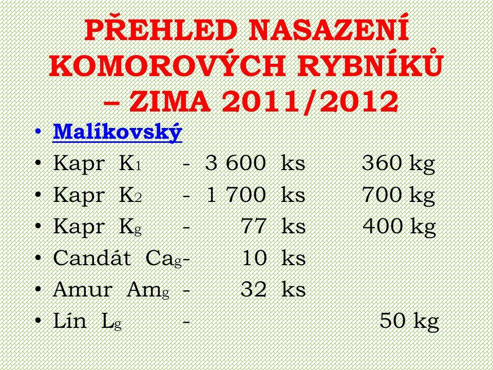 PŘEHLED NASAZENÍ KOMOROVÝCH RYBNÍKŮ – ZIMA 2011/2012 Malíkovský Kapr K 1 - 3 600 ks 360 kg Kapr K 2 - 1 700 ks 700 kg Kapr K g - 77 ks 400 kg Candát C