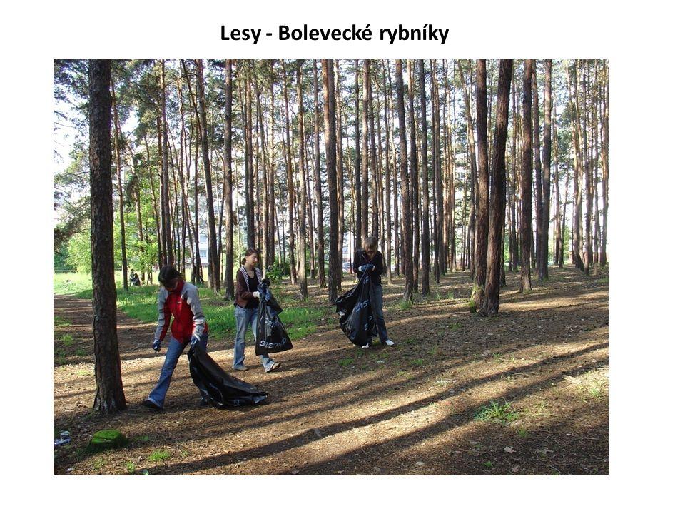 Lesy - Bolevecké rybníky