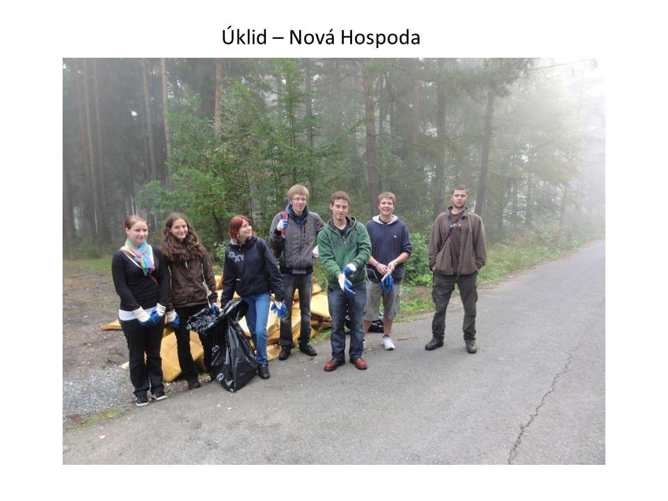 Vydělané peníze studenti poukazují nadaci Haima DK FN Plzeň. Pomáhají dobudovat relaxační zahradu.