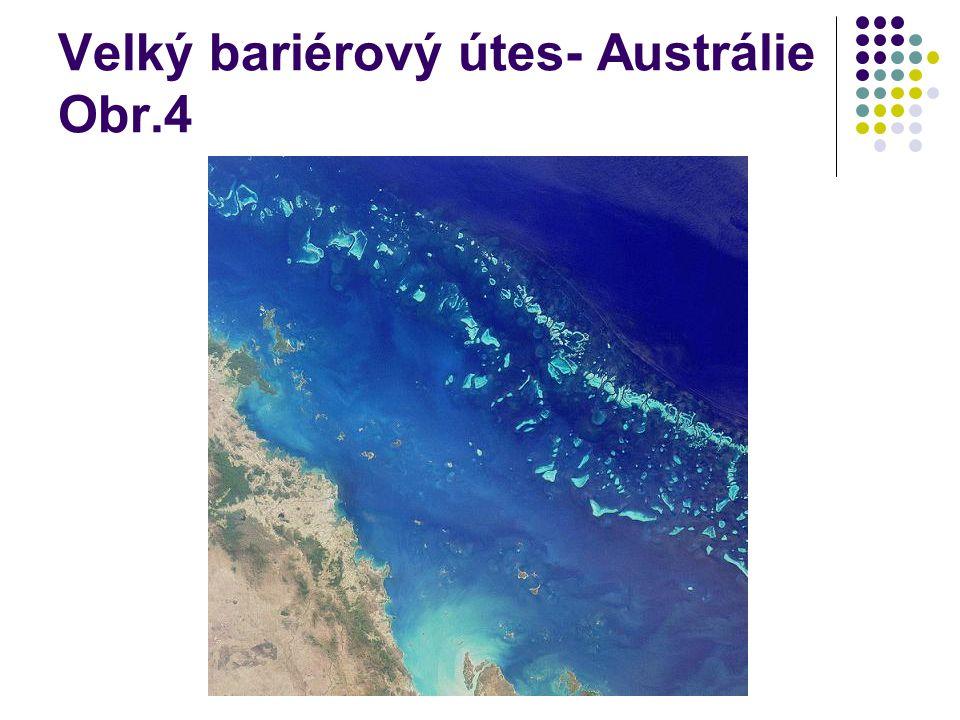 Velký bariérový útes- Austrálie Obr.4
