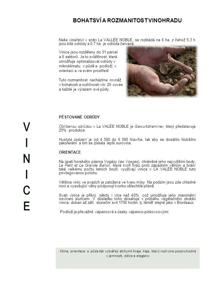 BOHATSVÍ A ROZMANITOST VINOHRADU Naše vinařství v srdci La VALLÉE NOBLE, se rozkládá na 6 ha, z čehož 5,3 h jsou bílé odrůdy a 0,7 ha je odrůda červená.