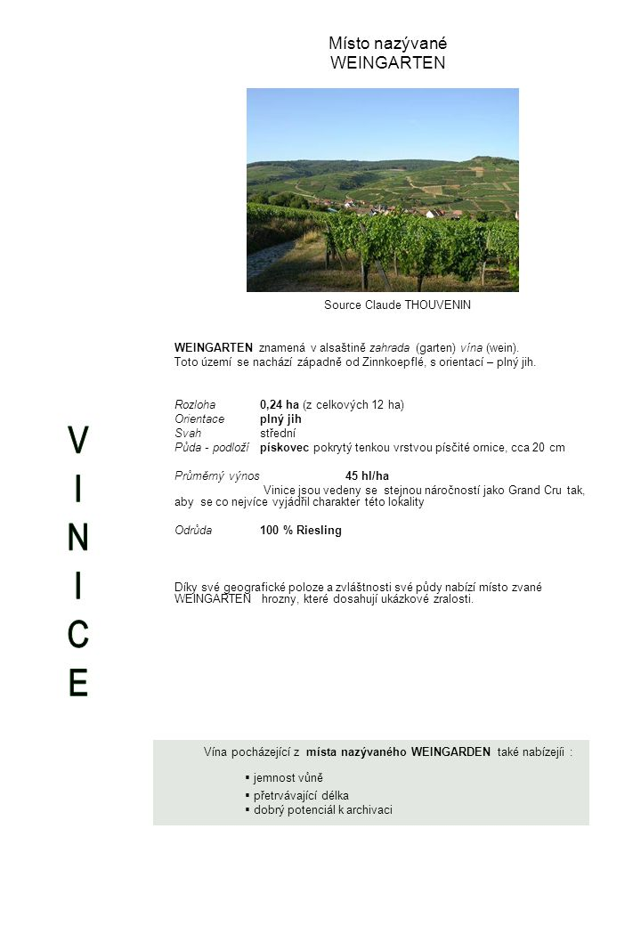 Místo nazývané WEINGARTEN Source Claude THOUVENIN WEINGARTEN znamená v alsaštině zahrada (garten) vína (wein).