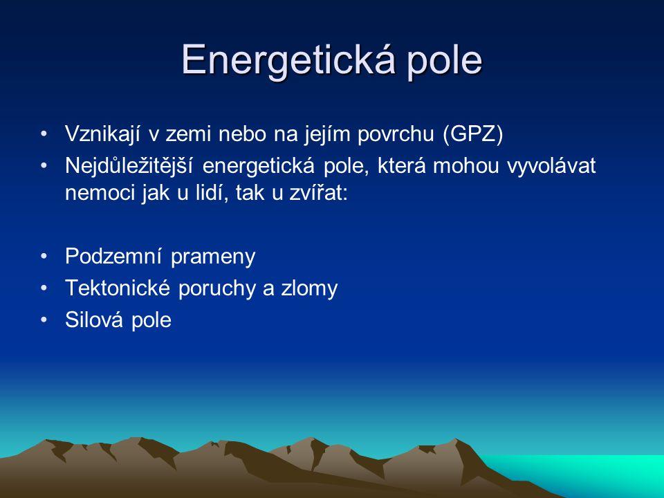 Energetická pole Vznikají v zemi nebo na jejím povrchu (GPZ) Nejdůležitější energetická pole, která mohou vyvolávat nemoci jak u lidí, tak u zvířat: Podzemní prameny Tektonické poruchy a zlomy Silová pole