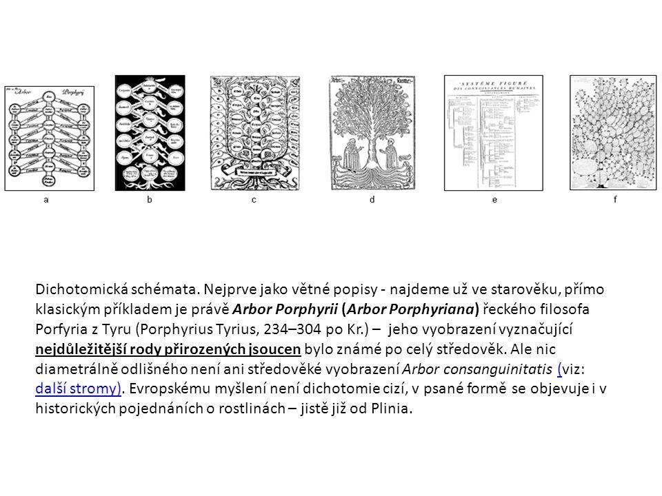 Dichotomická schémata. Nejprve jako větné popisy - najdeme už ve starověku, přímo klasickým příkladem je právě Arbor Porphyrii (Arbor Porphyriana) řec