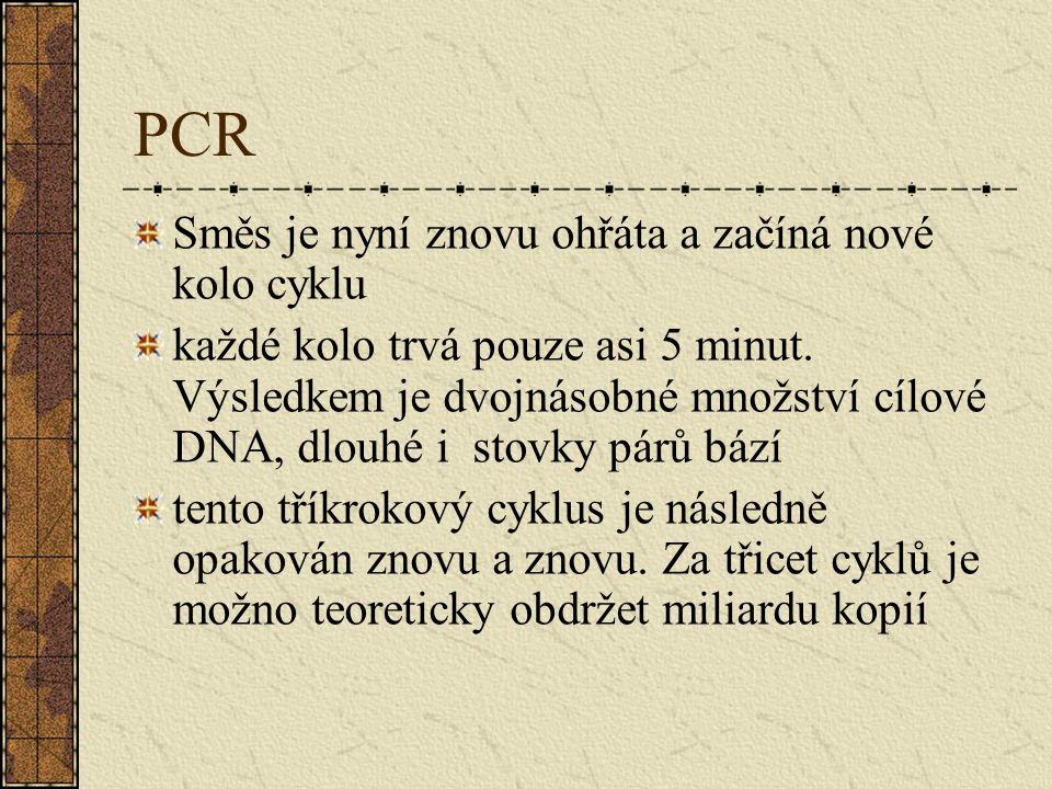 PCR Směs je nyní znovu ohřáta a začíná nové kolo cyklu každé kolo trvá pouze asi 5 minut. Výsledkem je dvojnásobné množství cílové DNA, dlouhé i stovk