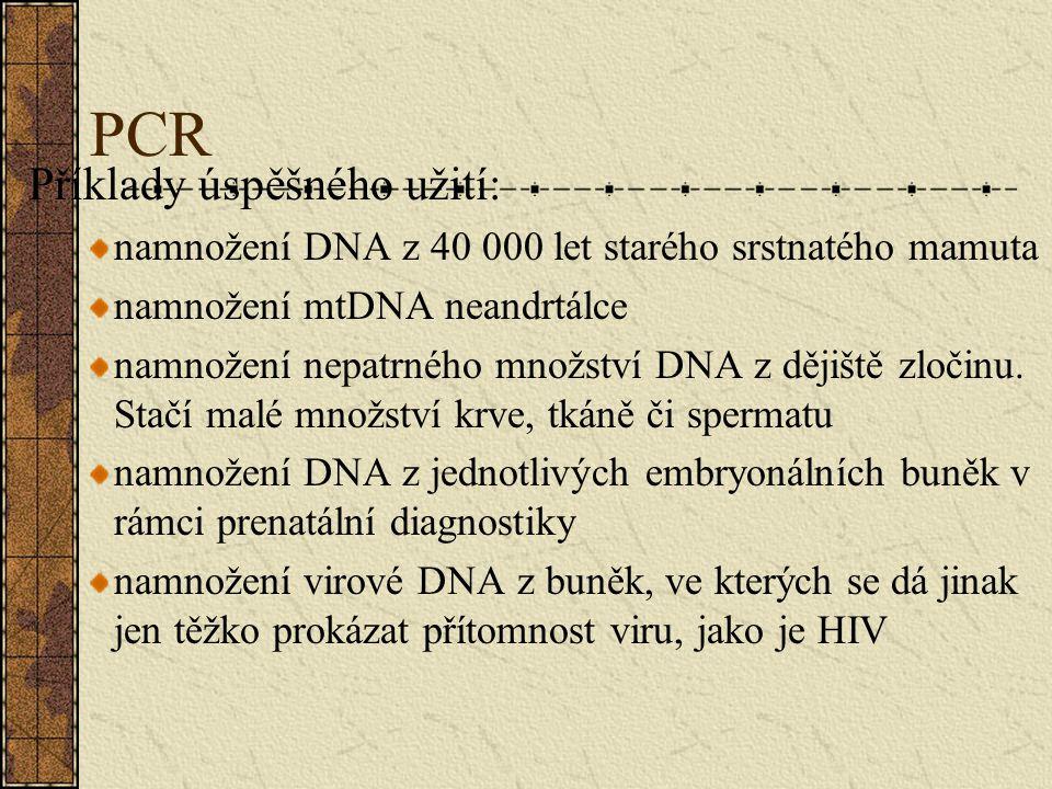PCR Příklady úspěšného užití: namnožení DNA z 40 000 let starého srstnatého mamuta namnožení mtDNA neandrtálce namnožení nepatrného množství DNA z děj