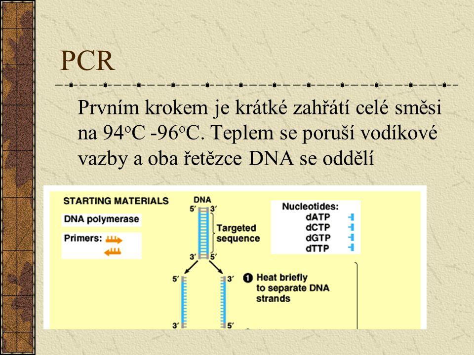 PCR Prvním krokem je krátké zahřátí celé směsi na 94 o C -96 o C. Teplem se poruší vodíkové vazby a oba řetězce DNA se oddělí