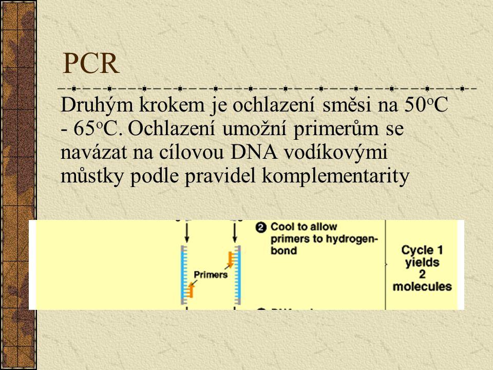 PCR Druhým krokem je ochlazení směsi na 50 o C - 65 o C. Ochlazení umožní primerům se navázat na cílovou DNA vodíkovými můstky podle pravidel kompleme