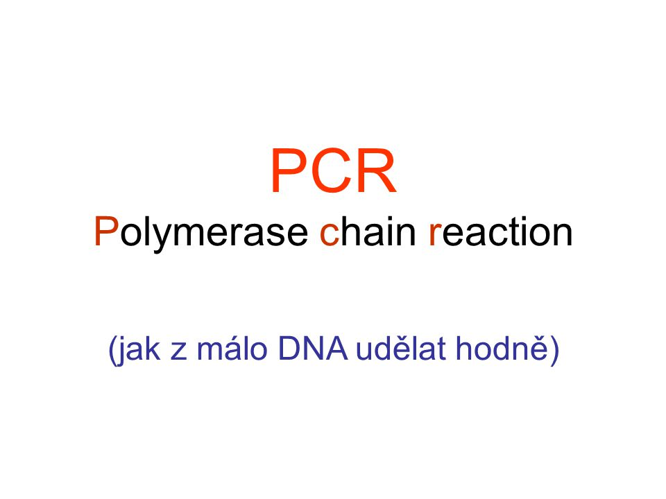PCR Polymerase chain reaction (jak z málo DNA udělat hodně)