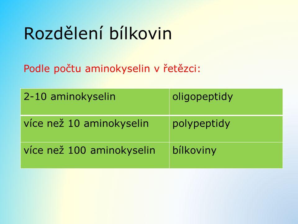 Rozdělení bílkovin Podle počtu aminokyselin v řetězci: 2-10 aminokyselinoligopeptidy více než 10 aminokyselinpolypeptidy více než 100 aminokyselinbílk