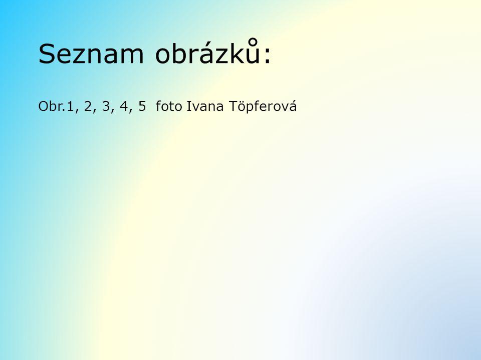 Seznam obrázků: Obr.1, 2, 3, 4, 5 foto Ivana Töpferová