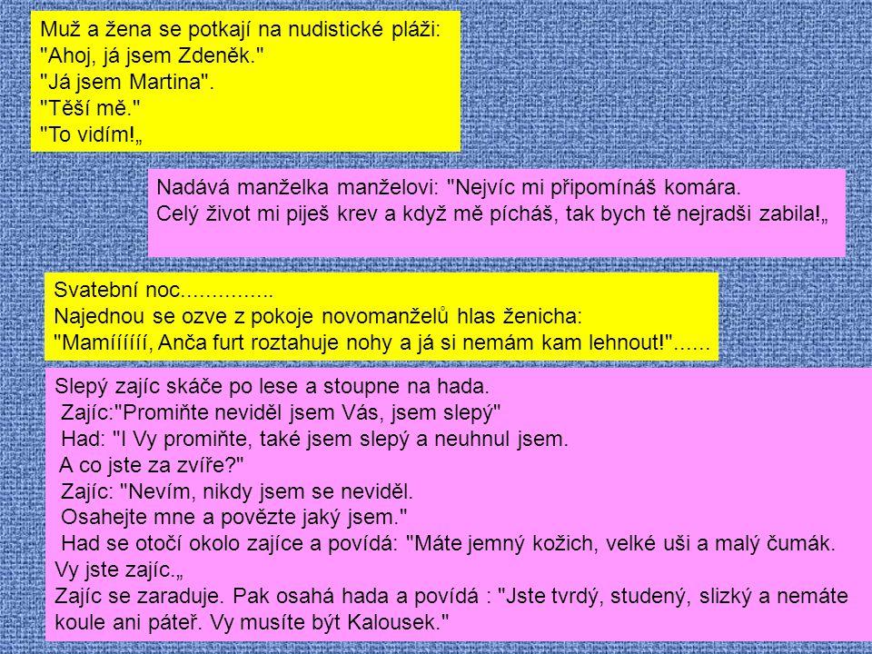 Muž a žena se potkají na nudistické pláži: Ahoj, já jsem Zdeněk. Já jsem Martina .