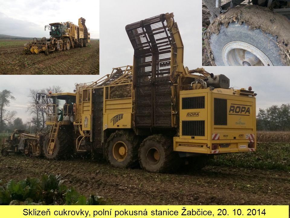 Sklizeň cukrovky, polní pokusná stanice Žabčice, 20. 10. 2014