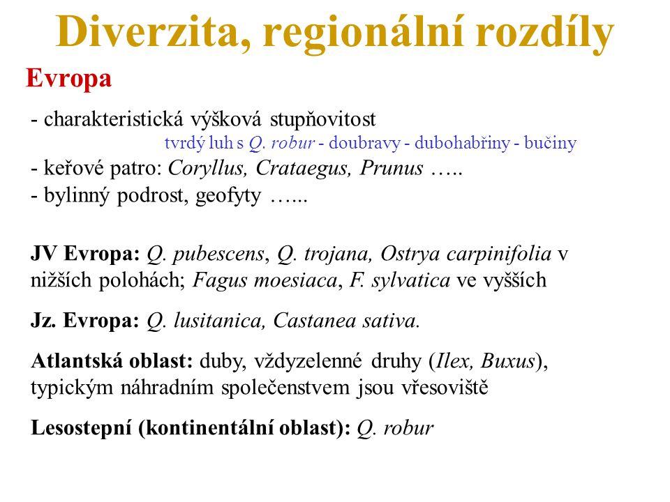 Diverzita, regionální rozdíly Evropa - charakteristická výšková stupňovitost tvrdý luh s Q. robur - doubravy - dubohabřiny - bučiny - keřové patro: Co