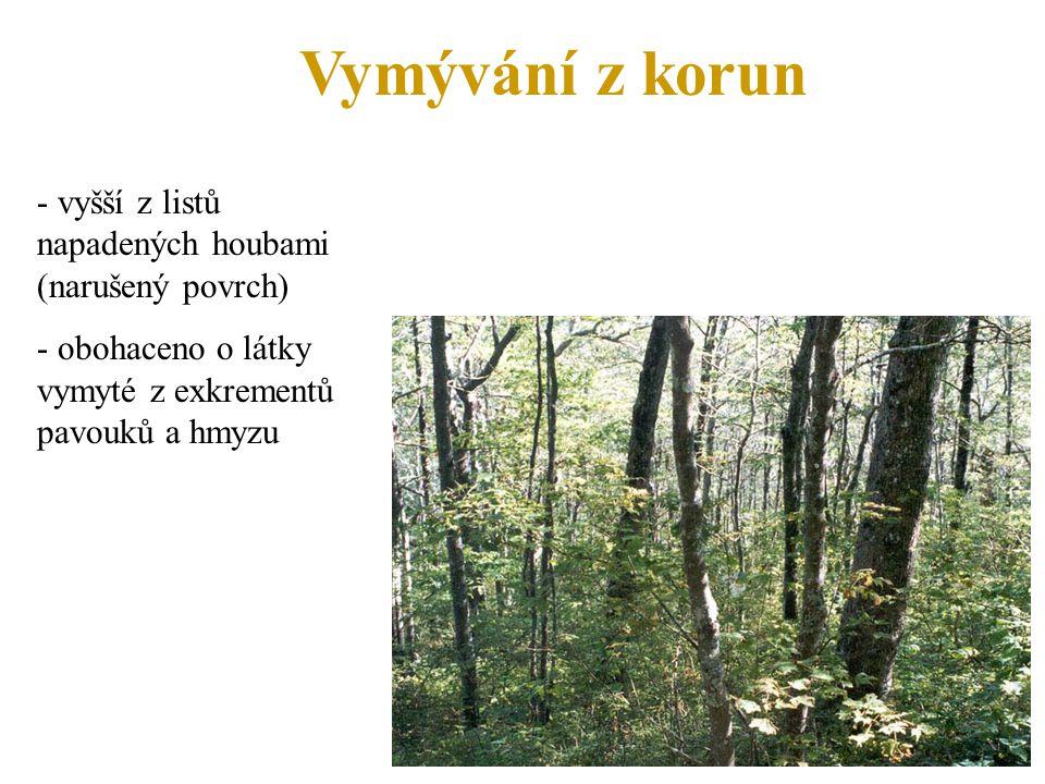 Vymývání z korun - vyšší z listů napadených houbami (narušený povrch) - obohaceno o látky vymyté z exkrementů pavouků a hmyzu