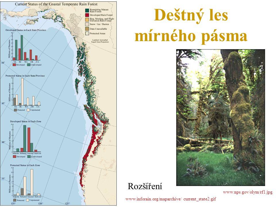 Deštný les mírného pásma Rozšíření www.inforain.org/maparchive/ current_state2.gif www.nps.gov/olym/rf1.jpg