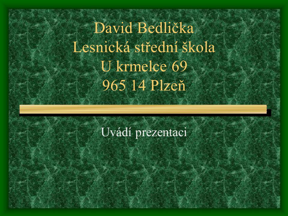 David Bedlička Lesnická střední škola U krmelce 69 965 14 Plzeň Uvádí prezentaci