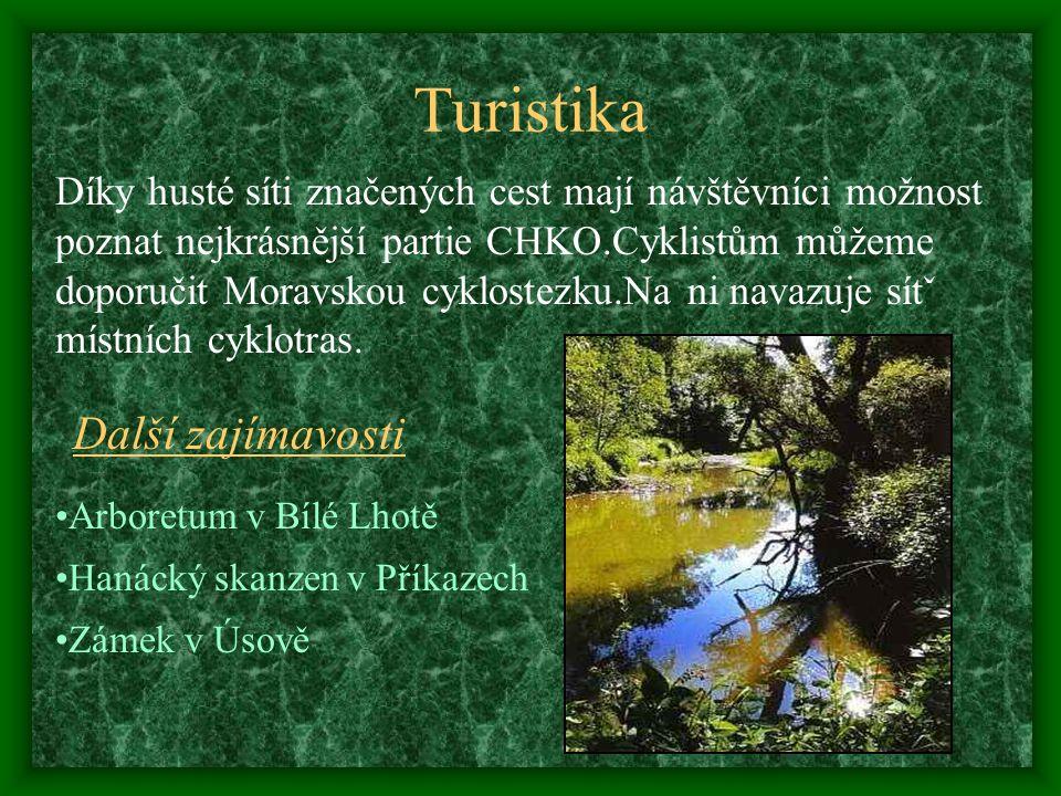 Mezinárodní význam Natura 2000 Je soustava chráněných území, jejichž cílem je chránit rostlinné a živočišné druhy a přírodní stanoviště významné z evropského hlediska.