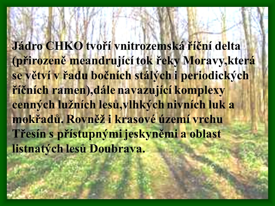Jádro CHKO tvoří vnitrozemská říční delta (přirozeně meandrující tok řeky Moravy,která se větví v řadu bočních stálých i periodických říčních ramen),dále navazující komplexy cenných lužních lesů,vlhkých nivních luk a mokřadů.