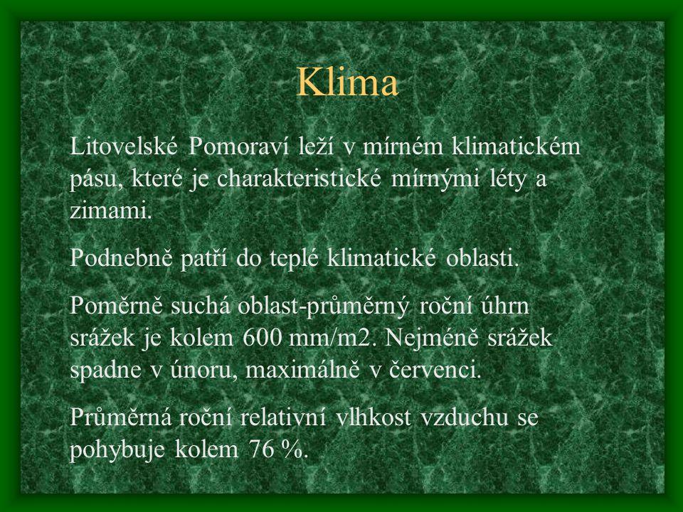 Správa CHKO Správa CHKO Litovelské Pomoraví Husova 906/5 784 01 Litovel tel : 585 344 156 e-mail : litpom@schkocr.cz litpom@schkocr.cz http://web.quick.cz/litovelskepomoravi/ Odkaz: