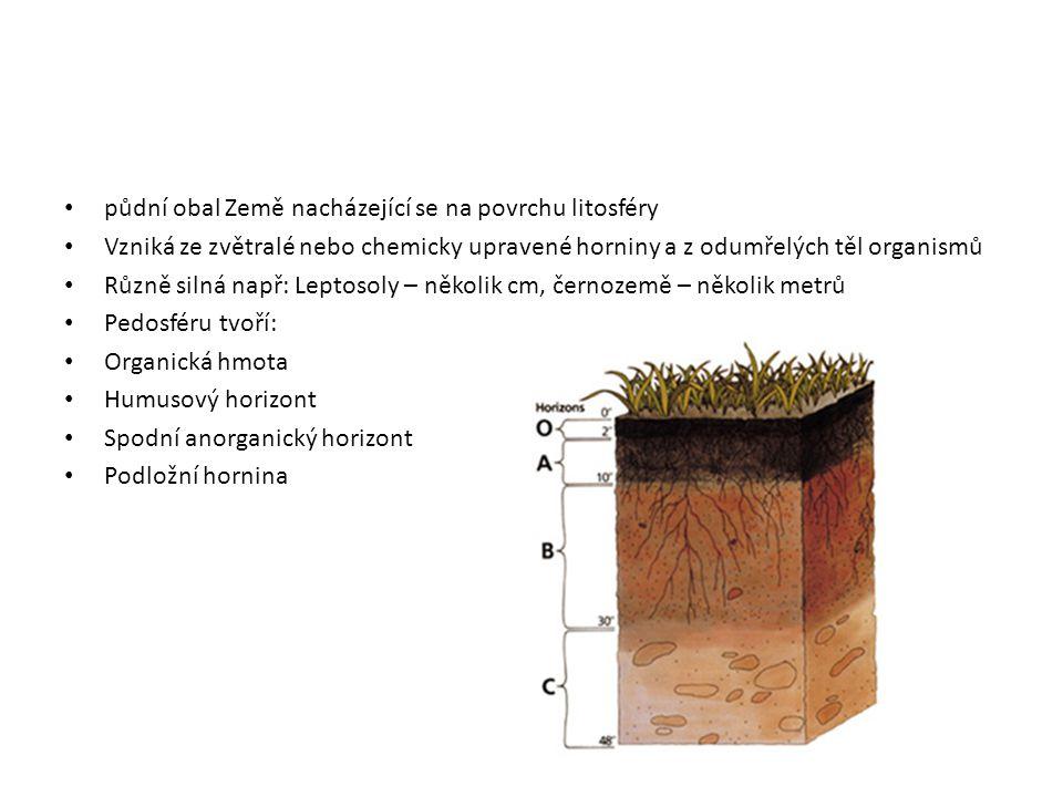 půdní obal Země nacházející se na povrchu litosféry Vzniká ze zvětralé nebo chemicky upravené horniny a z odumřelých těl organismů Různě silná např: L