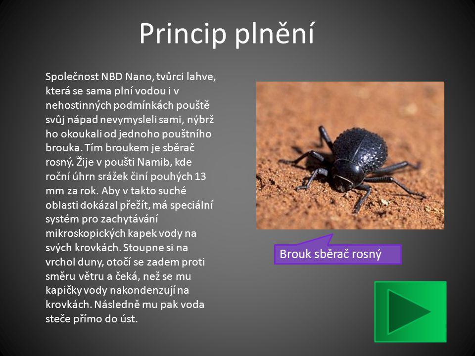Princip plnění Brouk sběrač rosný Společnost NBD Nano, tvůrci lahve, která se sama plní vodou i v nehostinných podmínkách pouště svůj nápad nevymyslel