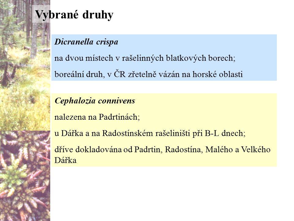 Dicranella crispa na dvou místech v rašelinných blatkových borech; boreální druh, v ČR zřetelně vázán na horské oblasti Cephalozia connivens nalezena