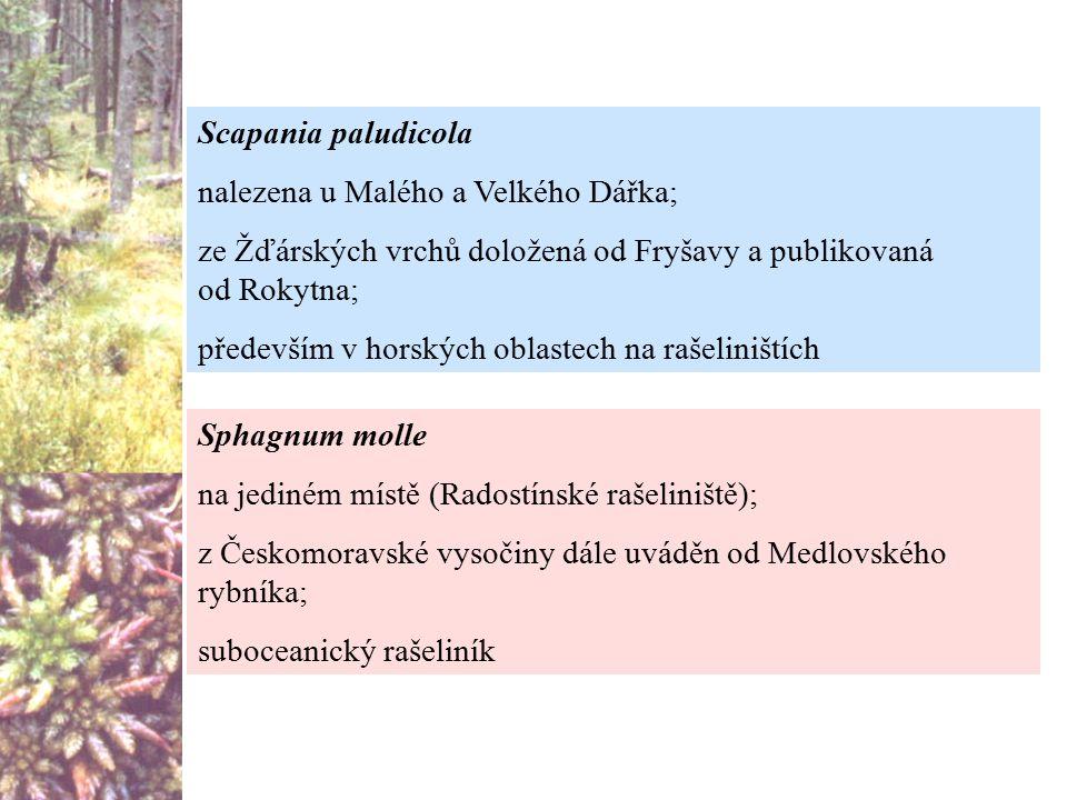 Sphagnum molle na jediném místě (Radostínské rašeliniště); z Českomoravské vysočiny dále uváděn od Medlovského rybníka; suboceanický rašeliník Scapani