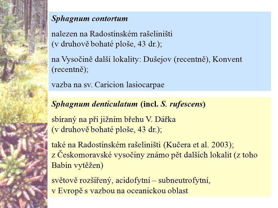 Sphagnum denticulatum (incl. S. rufescens) sbíraný na při jižním břehu V. Dářka (v druhově bohaté ploše, 43 dr.); také na Radostínském rašeliništi (Ku
