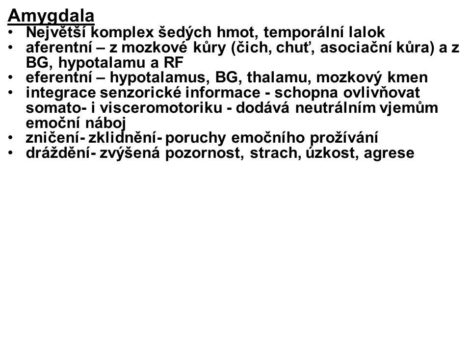Amygdala Největší komplex šedých hmot, temporální lalok aferentní – z mozkové kůry (čich, chuť, asociační kůra) a z BG, hypotalamu a RF eferentní – hy