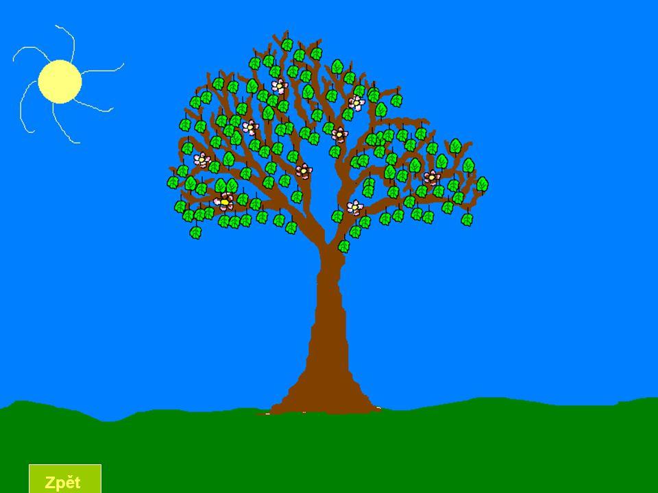 LÉTO Léto je jedno z ročních období.V různých oborech je ale definováno různě.