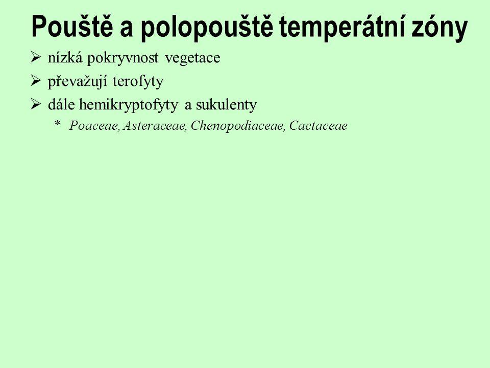 Pouště a polopouště temperátní zóny  nízká pokryvnost vegetace  převažují terofyty  dále hemikryptofyty a sukulenty *Poaceae, Asteraceae, Chenopodi