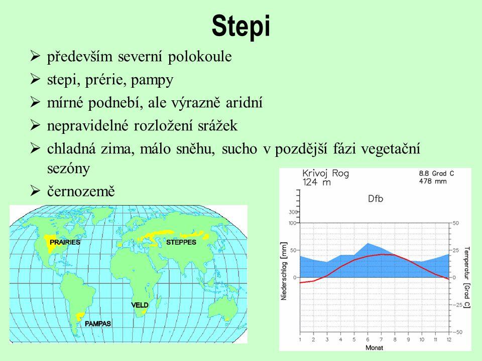 Stepi  především severní polokoule  stepi, prérie, pampy  mírné podnebí, ale výrazně aridní  nepravidelné rozložení srážek  chladná zima, málo sn