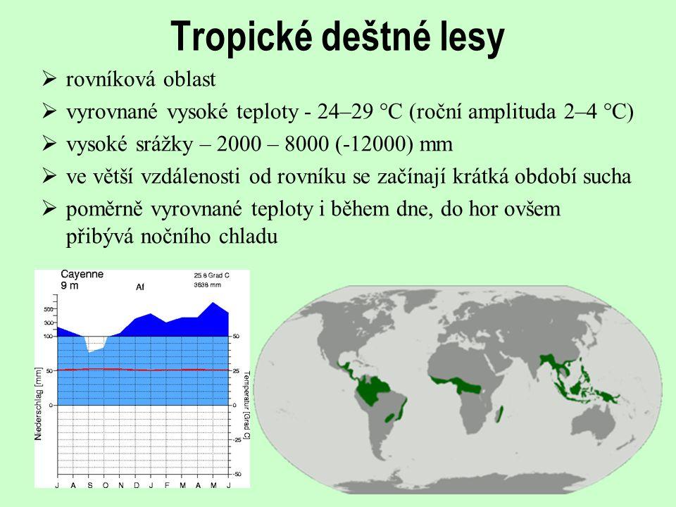 Tropické deštné lesy  rovníková oblast  vyrovnané vysoké teploty - 24–29 °C (roční amplituda 2–4 °C)  vysoké srážky – 2000 – 8000 (-12000) mm  ve