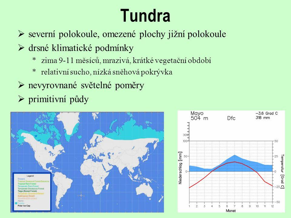 Tundra  severní polokoule, omezené plochy jižní polokoule  drsné klimatické podmínky *zima 9-11 měsíců, mrazivá, krátké vegetační období *relativní