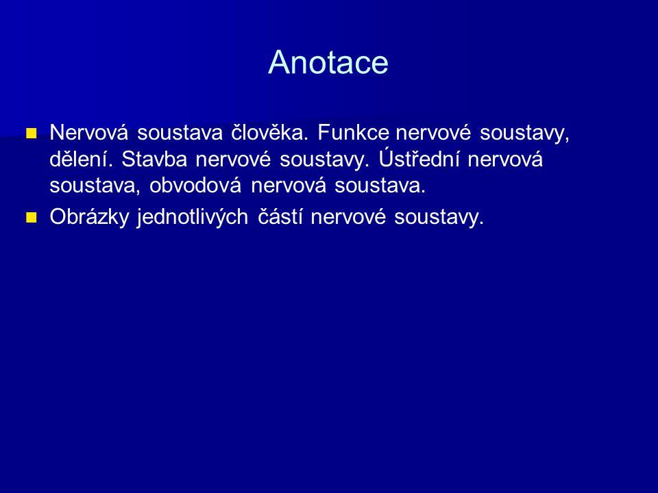 Anotace Nervová soustava člověka. Funkce nervové soustavy, dělení. Stavba nervové soustavy. Ústřední nervová soustava, obvodová nervová soustava. Obrá