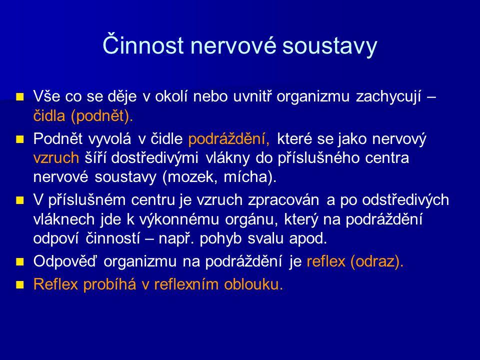 Činnost nervové soustavy Vše co se děje v okolí nebo uvnitř organizmu zachycují – čidla (podnět). Podnět vyvolá v čidle podráždění, které se jako nerv