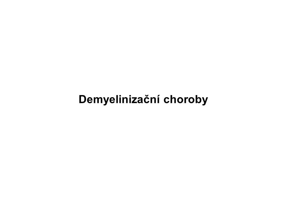 Demyelinizační choroby