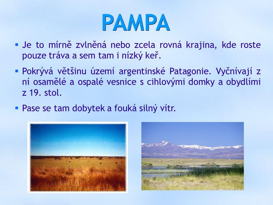 PAMPA  Je to mírně zvlněná nebo zcela rovná krajina, kde roste pouze tráva a sem tam i nízký keř.  Pokrývá většinu území argentinské Patagonie. Vyčn