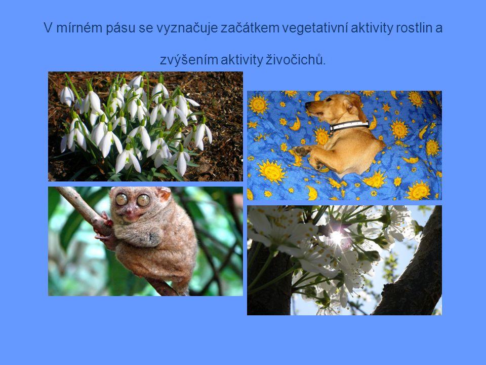 V mírném pásu se vyznačuje začátkem vegetativní aktivity rostlin a zvýšením aktivity živočichů.
