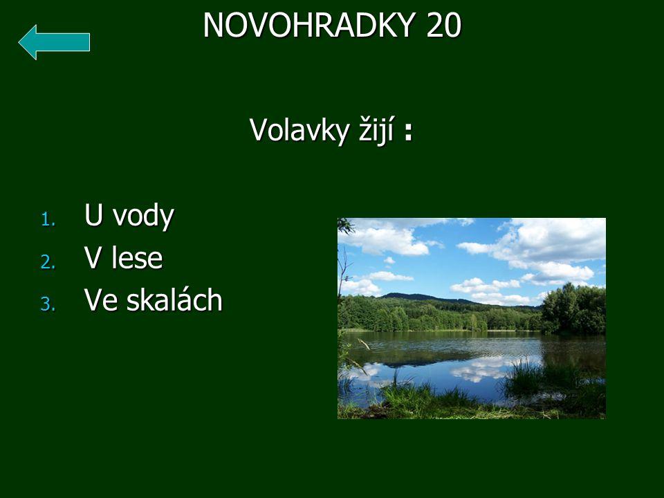 Volavky žijí : 1. U vody 2. V lese 3. Ve skalách NOVOHRADKY 20