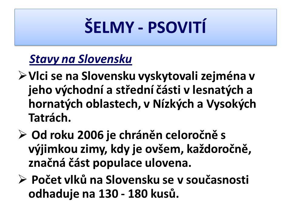 Stavy na Slovensku  Vlci se na Slovensku vyskytovali zejména v jeho východní a střední části v lesnatých a hornatých oblastech, v Nízkých a Vysokých