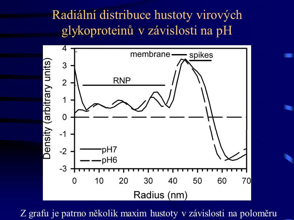 Radiální distribuce hustoty virových glykoproteinů v závislosti na pH Z grafu je patrno několik maxim hustoty v závislosti na poloměru