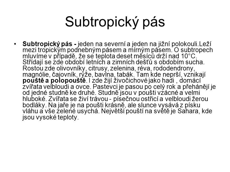 Subtropický pás Subtropický pás - jeden na severní a jeden na jižní polokouli.Leží mezi tropickým podnebným pásem a mírným pásem. O subtropech mluvíme